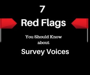 Survey Voices-red-flags-header